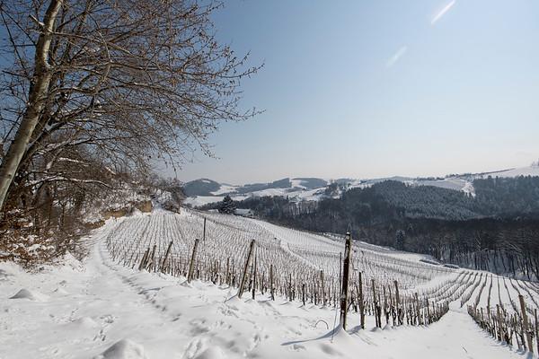 Weinland Winter