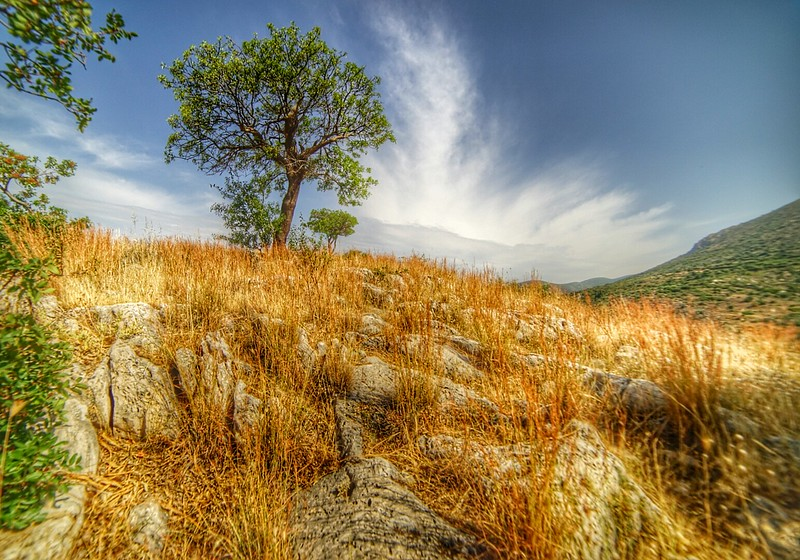 Mycenae hill
