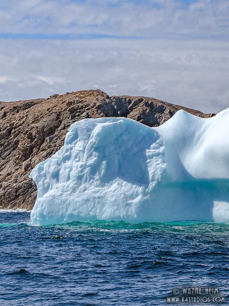 Iceberg 61    Photography by Wayne Heim