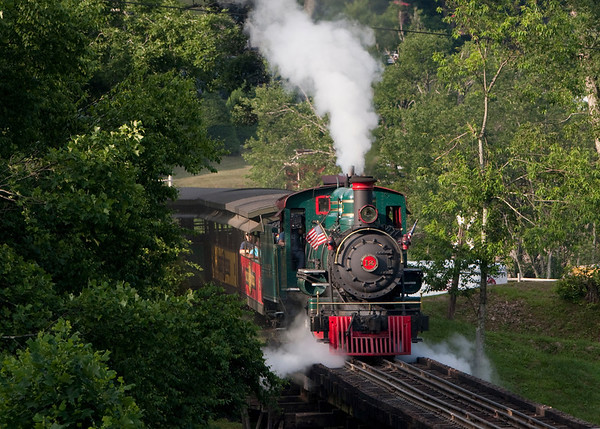 Park Trains