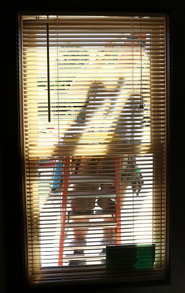 20150721 - Union Rescue Window Work