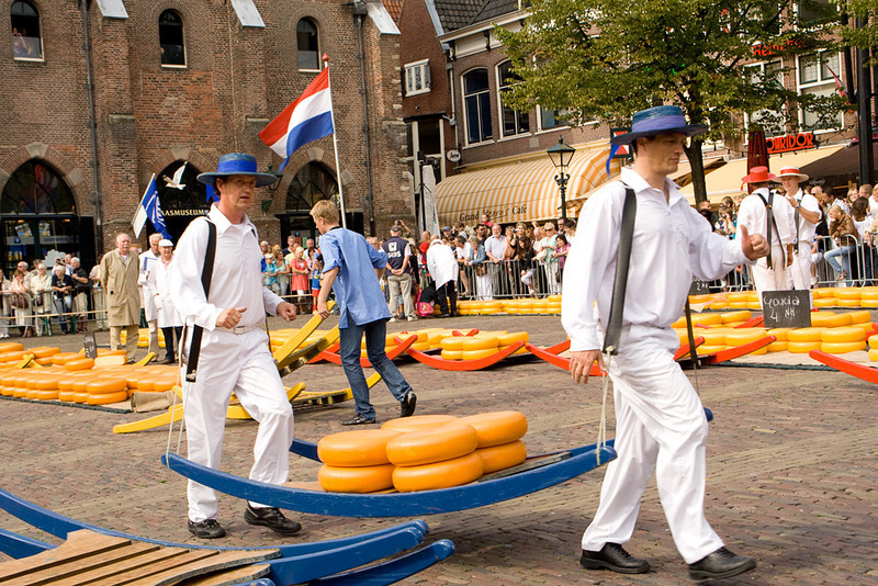Alkmaar. After a buyer has purchased a lot of cheese, members of the guild of cheese runners load it onto wooden barges, and run it over to the weighing station, and then to the wooden carts.