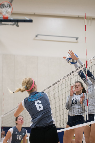 HPU Volleyball-91807.jpg