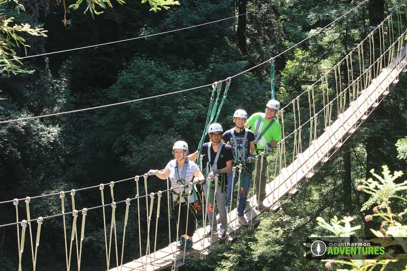 redwood_bridge_1528411622428.jpg