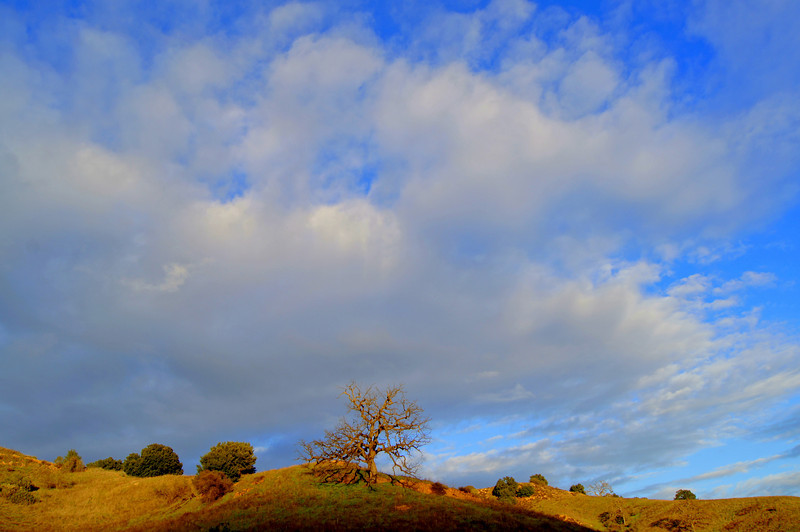 HDR Southern California Landscape