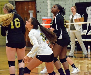 HS Sports - Volleyball - Edsel Ford, Southgate Anderson, Taylor High, Lincoln Park