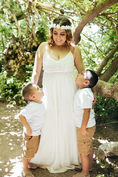 6-4-17 Bristina - Mommy & The Boys-9209.jpg