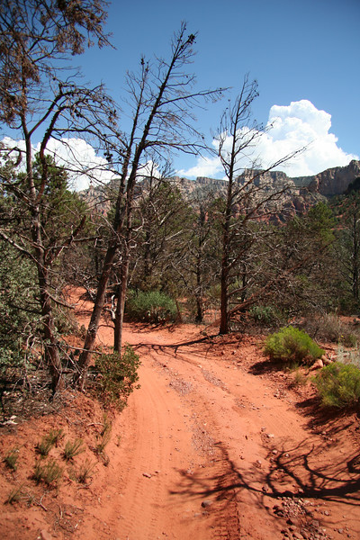 Part of the Broken Arrow jeep trail.