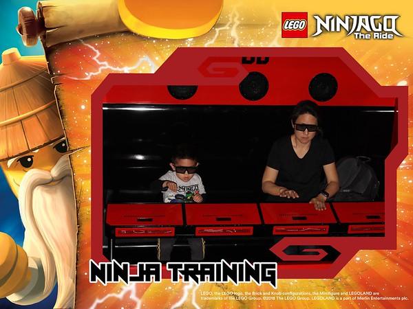 Legoland Jan 2020