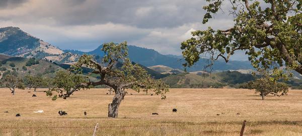 Santa Ynez Valley 2016