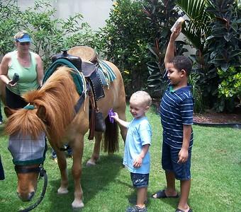 Maya's 4 year old Birthday (Hawaii Pony Party)