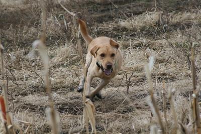 Fox Valley Training 041314