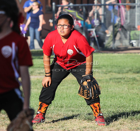 2016 - Youth Sports