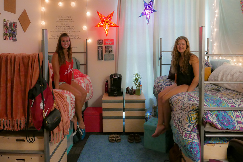 Alexis and Emma in their new and finished home.  Alexis made it back from camp in time to see the magical work done by her Mom (Beth).  Nice work ladies.