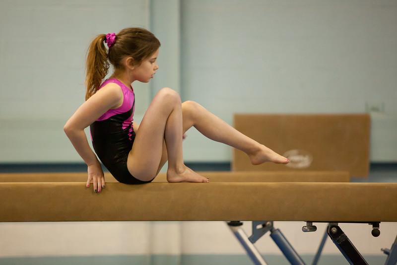 Olivia's Gymnastics Meet