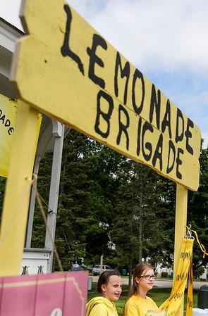 20150605 - Lemonade Brigade (SN)