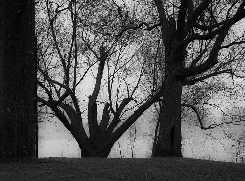 04-07-2020-fog-2.jpg