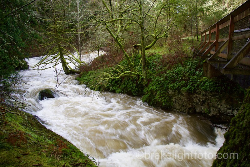 Bilston Creek