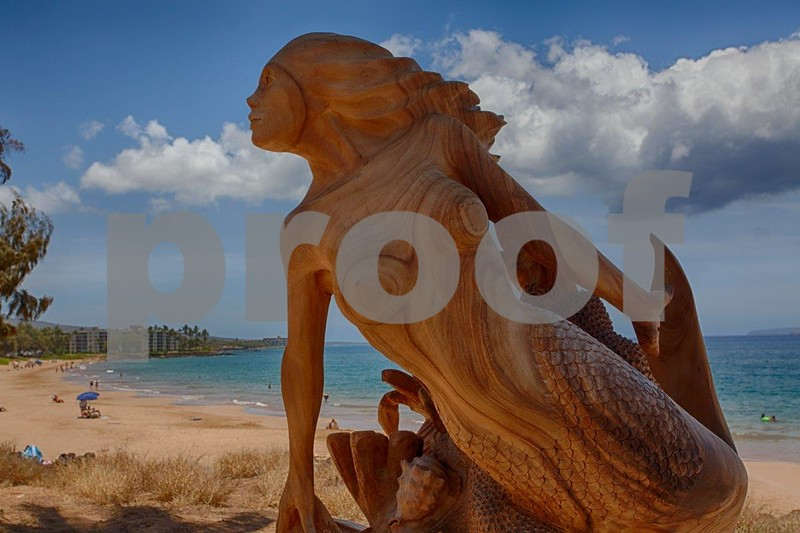 Maui driftwood scupture 8737_HDR.jpg