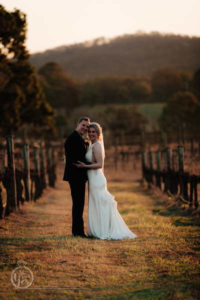Wedding Photography at Albert River Wines