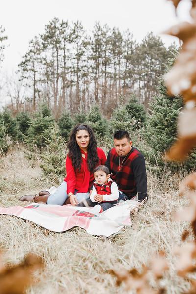 Julissa & Family | Williams Tree Farm Winter Sessions