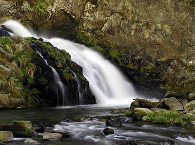 23 Whiteoak-Branch-Falls-NC.jpg