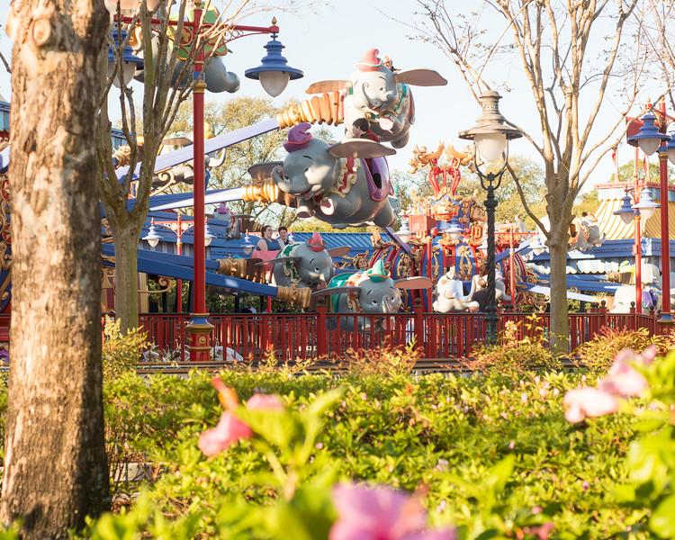Two Dumbo Spinners - Magic Kingdom Walt Disney World