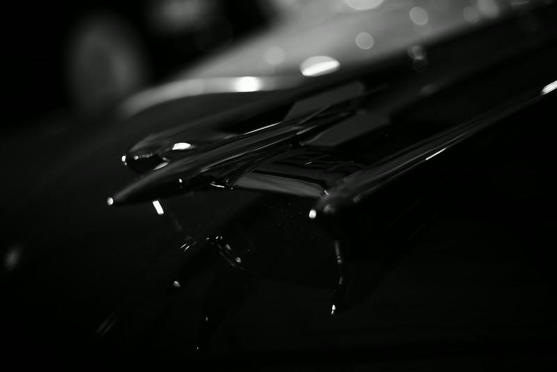 ROX_0194_1.JPG