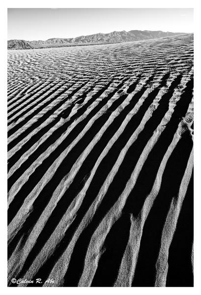 Desert Beyond.jpg