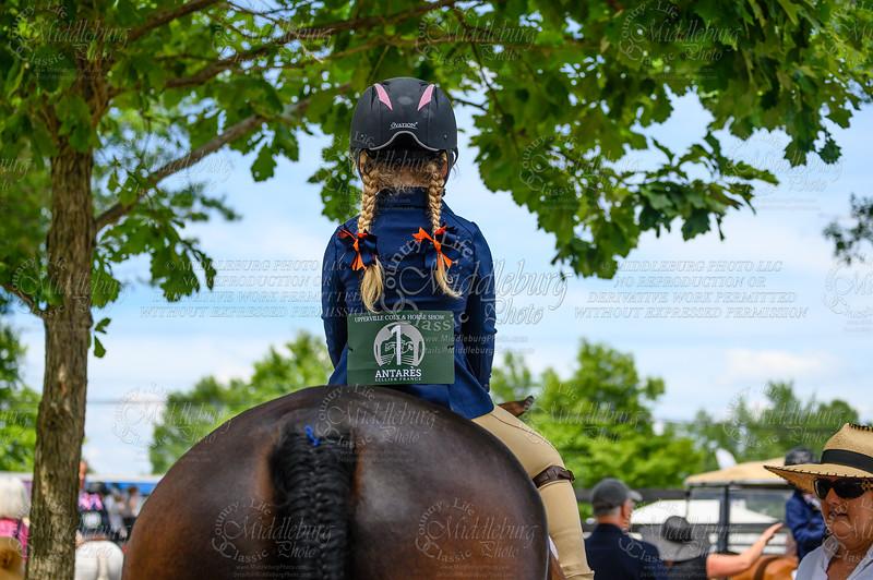 2019 Upperville Colt & Horse Show