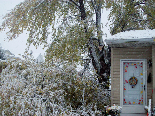 snow pics 10-28-08