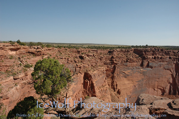 Dead Horse Point State Park - May 29, 2008