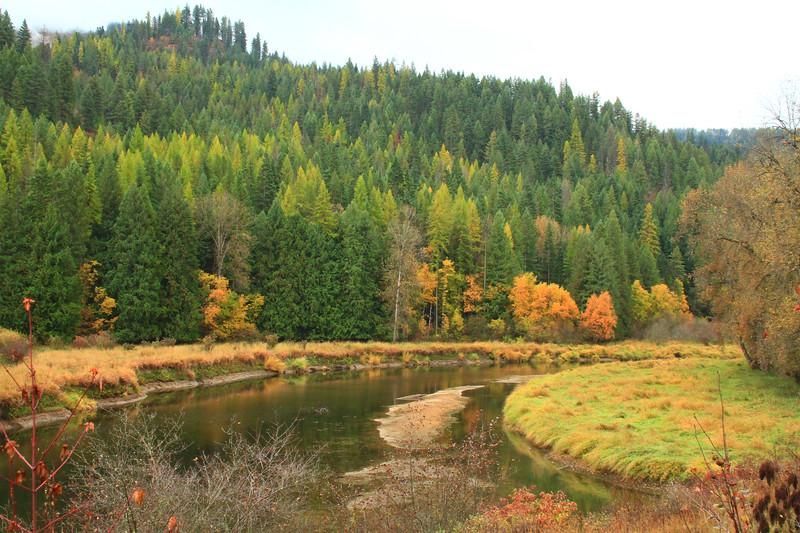 fall 2019 st maries river-1675.jpg