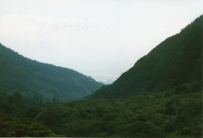 0530 - Looking out at Kahalui