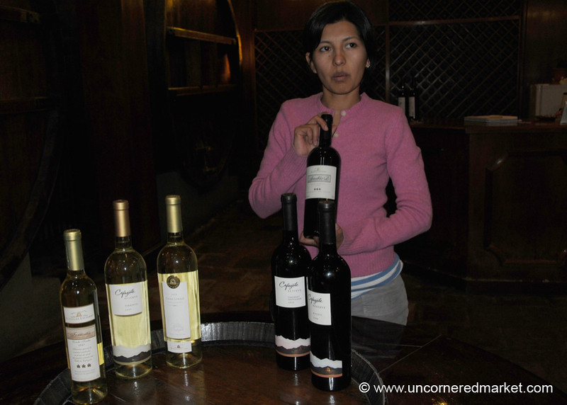 Learning About Etchart Winery - Cafayate, Argentina