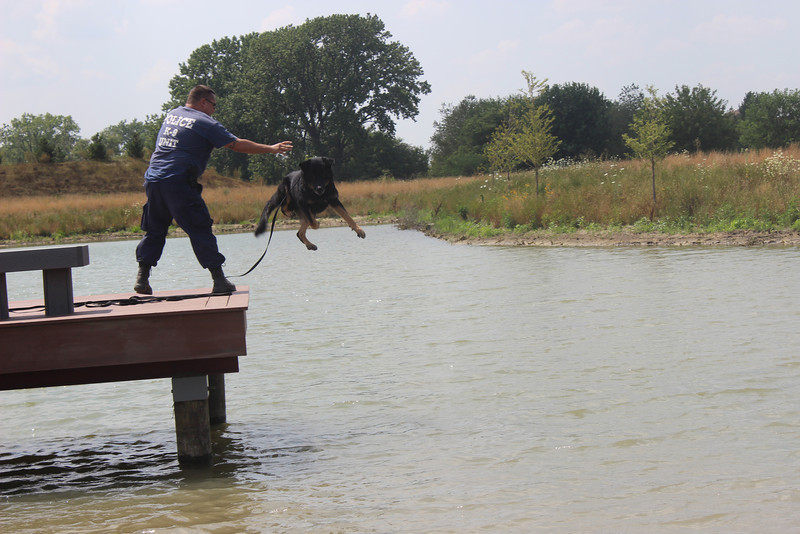 K9 Water Training 084.jpg