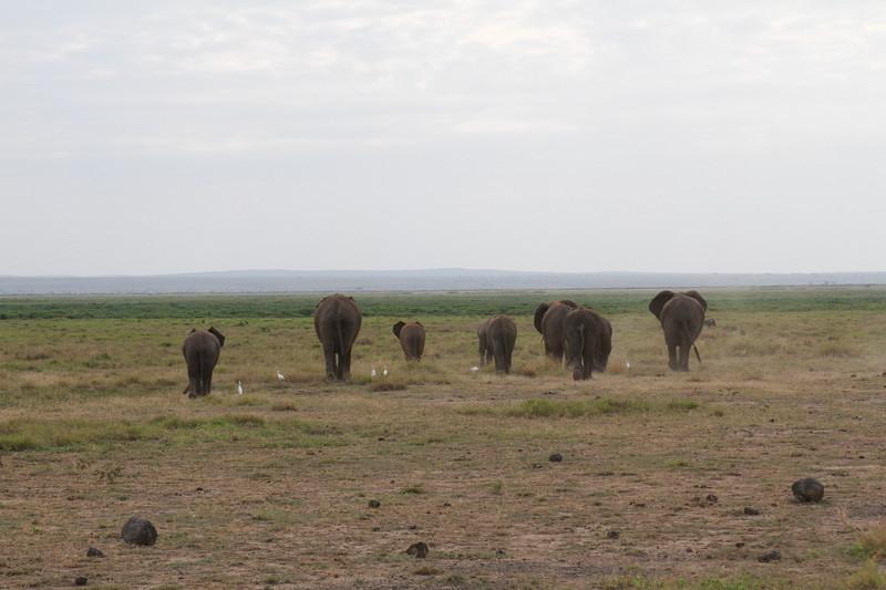 Kenya 2019 #2 688.JPG