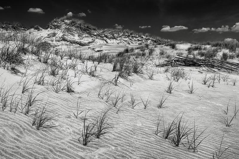 fire-island-dunes-01.jpg