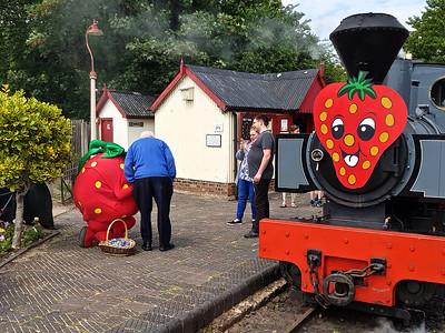 2019 Strawberries & Steam