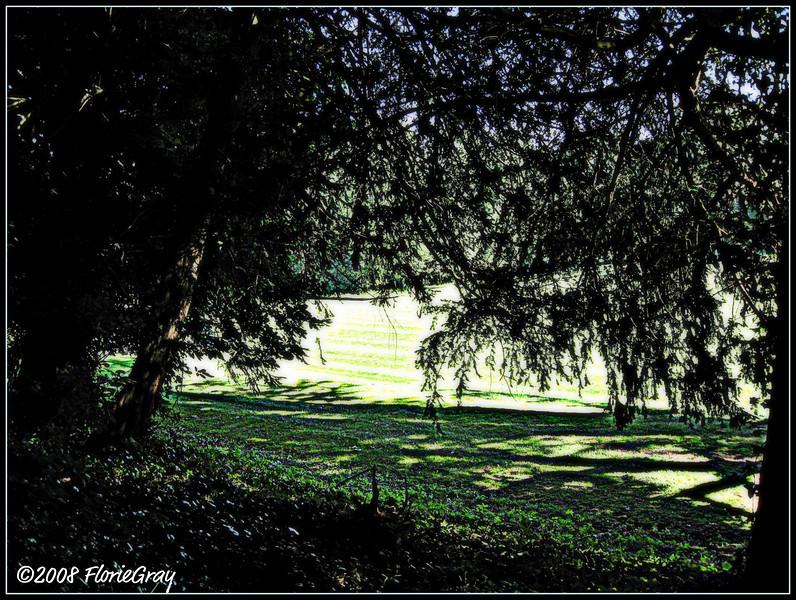 Greenfields  ©2008 FlorieGray, Wroxton
