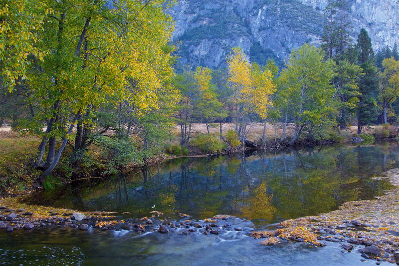 YOS-191029-0010 A riffle in the Merced River surrounded by Autumn colors