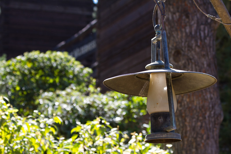 Electric Lantern on Tom Sawyer's Island