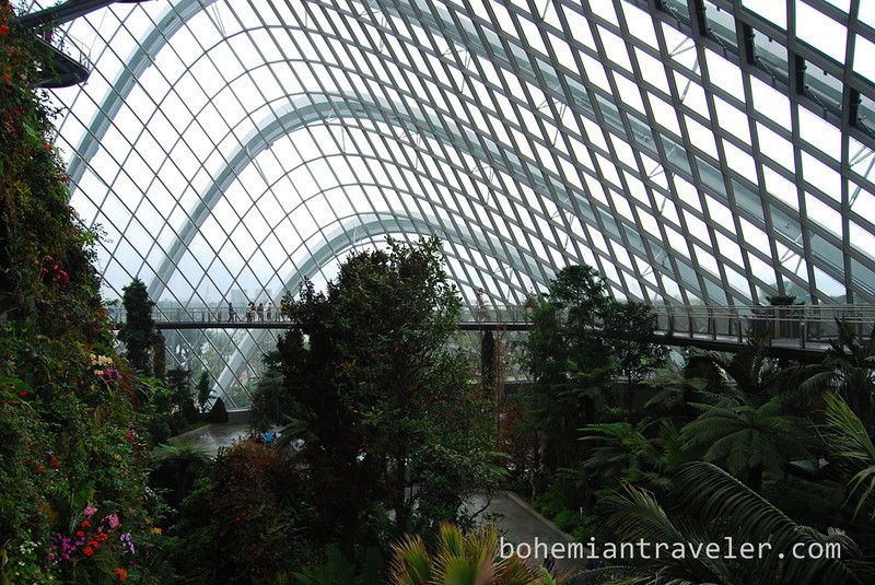 Cloud Forest at Gardens by the Bay.jpg