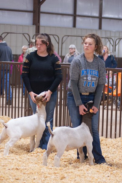 kay_county_showdown_goats_20191207-44.jpg