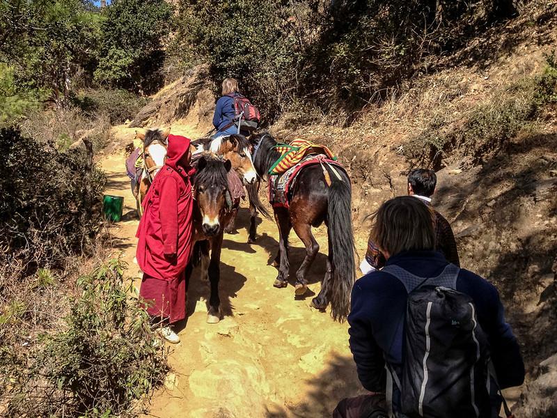 031313_TL_Bhutan_2013_112.jpg