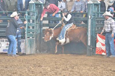 09-20-14 Steer Riding Saddle