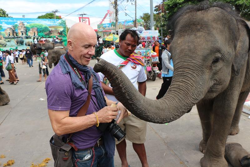 2014-11-14 Surin Elephant Welcome Feast 794.JPG