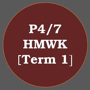 P4/7 HMWK T1