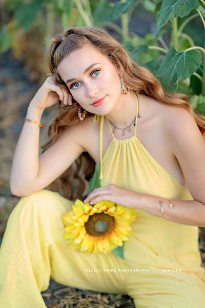 Sunflower 1207 a.jpg