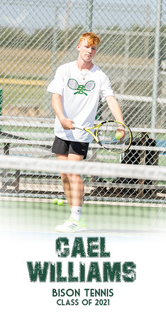 BC Tennis Senior Banners